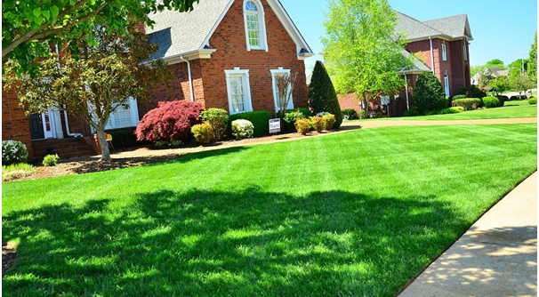 how-to-care-for-your-lawn-over-winter