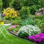 Tips For Designing a Garden