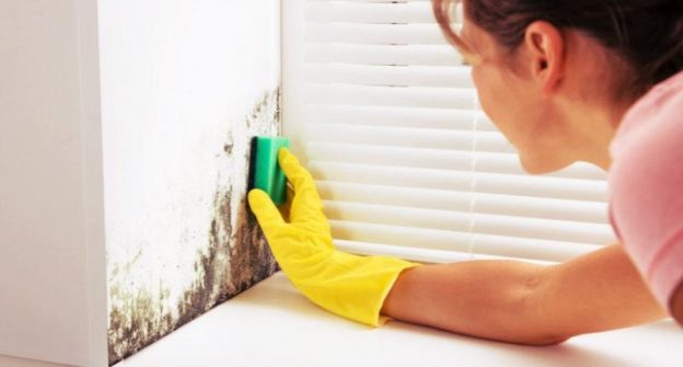 How To Reduce Mould Allergies